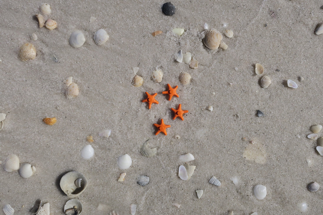 A group of 4 orange LEGO sea stars on the beach surrounded by sea shells.